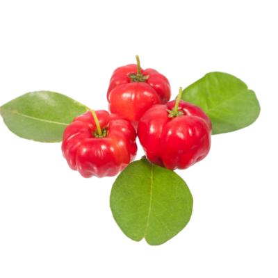 cherry-acerola