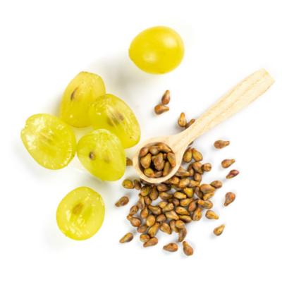 pépins de raisin